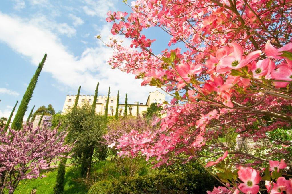 Merano castle Italy